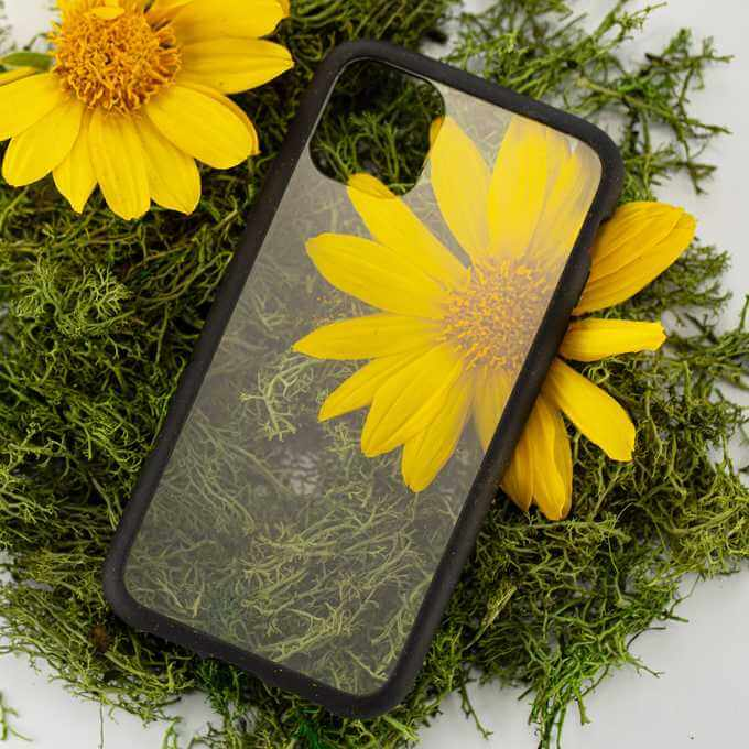 Clear phone case with black ridge by Pela Case